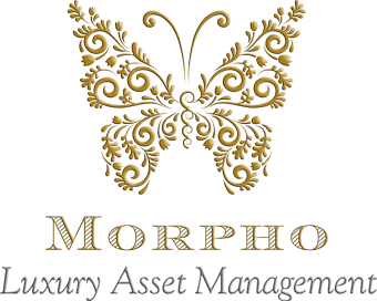 Morpho Group