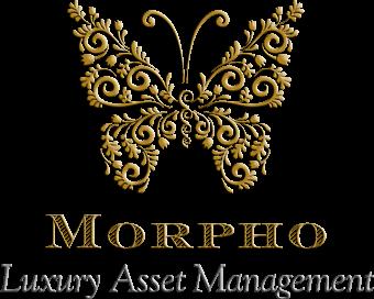 Morpho Group